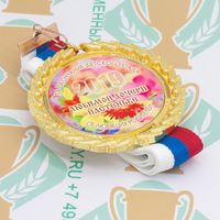 Медаль выпускника детского сада Premium70. Металл (артикул 881211370)