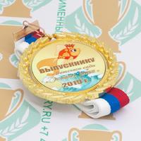 Медаль выпускника детского сада Premium70. Металл (артикул 878711345)