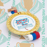Медаль выпускника детского сада Premium70. Металл (артикул 881511373)