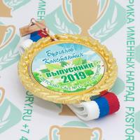 Медаль выпускника детского сада Premium70. Металл (артикул 883111389)