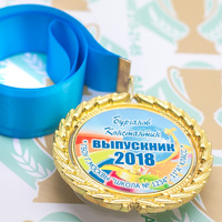Медаль выпускника 9-11 класса Premium (артикул 74479635)