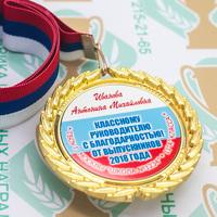 Медаль выпускника 9-11 класса Premium (артикул 74319619)