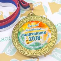 """Медали 9-11 класс """"Новинка"""" (артикул 74009587)"""