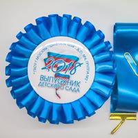 Наградные розетки выпускнику детского сада (артикул 832710867)