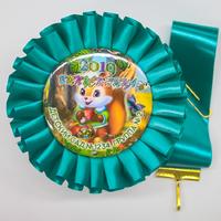 Наградные розетки выпускнику детского сада (артикул 836710907)