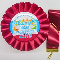 Наградные розетки выпускнику детского сада (артикул 837810918)